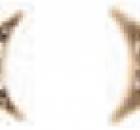 decor-estrella-teracon-biege